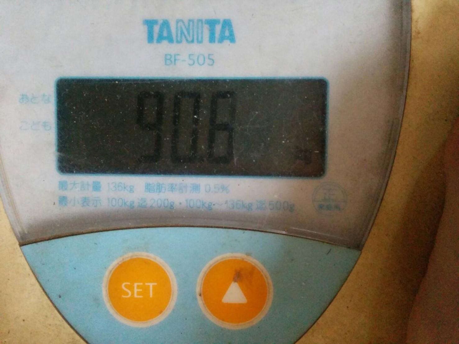ダイエット21日目の旦那の体重